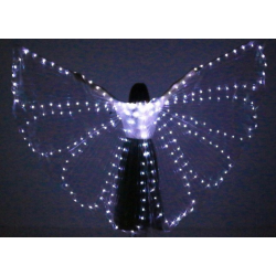 Wings Asa LED 2mm inteira