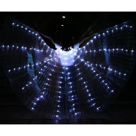 Asa de LED Inteira 2mm