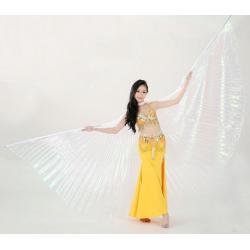 Wings Asas Dança