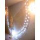 Asa de LED