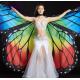 Wings Isis Asas Borboleta